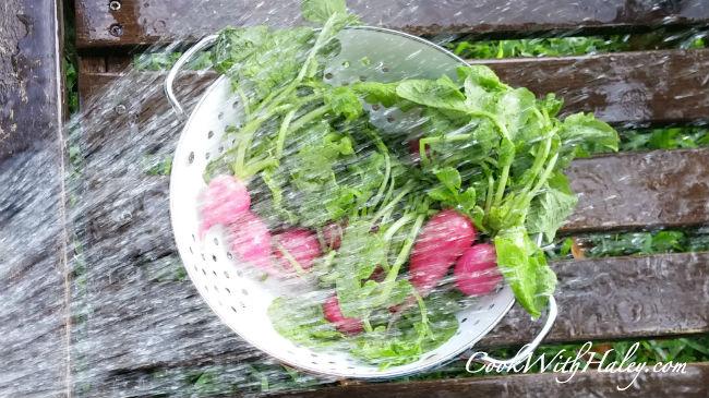 rinse radish greens