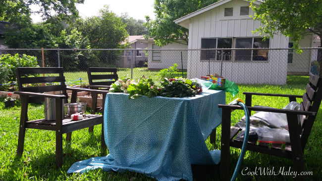 back yard picknick table